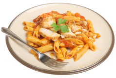 Penne Pasta with Chicken Royalty Free Stock Photos