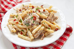 Penne pasta with chicken and cream sauce Royalty Free Stock Photography
