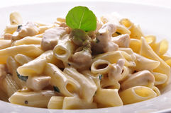 Penne pasta with white sauce Royalty Free Stock Photo