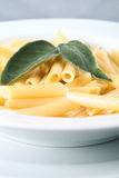 Penne rigate in bianco alla salvia. Italian pasta on a dish Royalty Free Stock Images