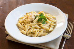 Penne with salmon mousse Stock Images