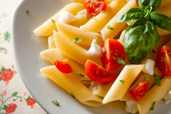 Penne Tricolore. Italian Pasta with Cherry Tomatoes, Mozzarella and Basil Stock Photography