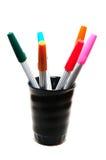 Penne variopinte in erba nera Fotografie Stock Libere da Diritti