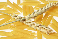 Penne with wheat ears Royalty Free Stock Images