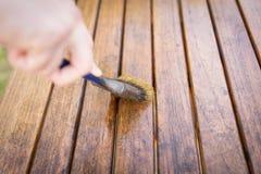 Pennello a disposizione e pittura sulla tavola di legno Immagini Stock
