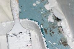Pennello e vassoio della pittura coperto in pittura bianca Fotografia Stock Libera da Diritti