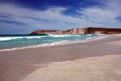 pennington кенгуруа острова залива Стоковая Фотография RF