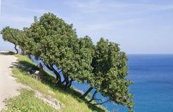Península de Akamas Imagen de archivo libre de regalías