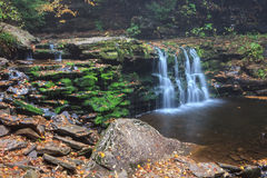 Pennsylvania Cayuga Waterfall. In Ricketts Glen State Park in Pennsylvania, the 11 foot Cayuga Waterfall has minimal water flow enabling the visitor to see the Royalty Free Stock Photography