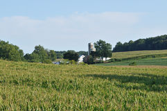 Pennsylvania countriside farm and corn fields Royalty Free Stock Images