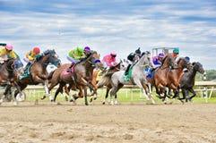 Pennsylvania Derby Day royalty-vrije stock foto