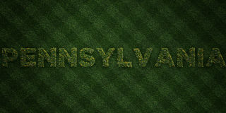 PENNSYLVANIA - fresh Grass letters with flowers and dandelions - 3D rendered royalty free stock image Stock Image