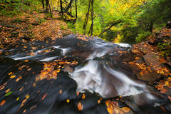 Pennsylvania Ricketts Glen State Park Autumn Stream Scenic Royalty Free Stock Images