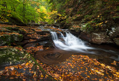 Pennsylvania Ricketts Glen State Park Autumn Waterfall Scenic Royalty Free Stock Image