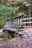 Pennsylvania Ricketts Glen State Park Landscape Stock Photos