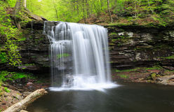 Pennsylvania Ricketts Glen Waterfall Stock Images