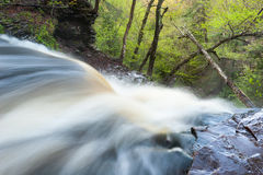 Pennsylvania Ricketts Glen Waterfall Spring Scenic Royalty Free Stock Photos
