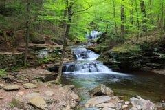 Pennsylvania Ricketts Glen Waterfall Stock Photography