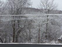 Pennsylvania snö Arkivbilder