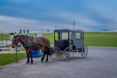 Pennsylvania, USA, APRIL, 18, 2018: Outdoor view of parked Amish buggy carriage in a farm with a horse used for a pull. The car in the streets in a gorgeous day Stock Images