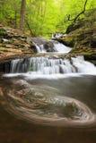 Pennsylvania Waterfall Ricketts Glen State Park Royalty Free Stock Image