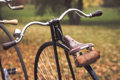 A penny-farthing bicycle Royalty Free Stock Image