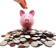 Penny into piggy bank Royalty Free Stock Image