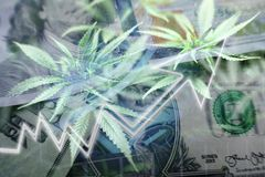 Penny Stock Concept Of Marijuana Stocks Soaring High Quality