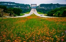 Pennybacker桥梁360高速公路春天野花显示 库存照片