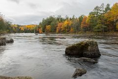 The Penobscot River Flows Around Large Boulders. With autum colors on trees Royalty Free Stock Photo