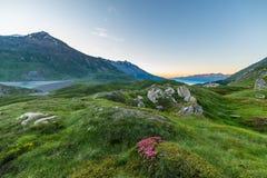 Penombra alpina Fotografie Stock