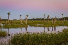 Penombra sopra una zona umida di Florida Immagini Stock