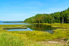 Penouille-Sektor Nationalparks Forillon lizenzfreie stockfotos
