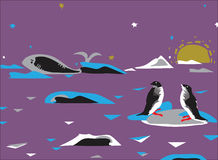 Penquins And Whale Stock Images