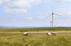Penrhyddlan和LLidiartywaun风力场 免版税库存图片