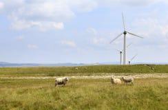 Penrhyddlan e parco eolico di LLidiartywaun Immagine Stock Libera da Diritti