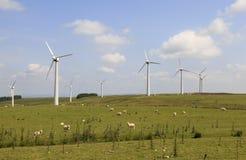 Penrhyddlan en LLidiartywaun Windfarm Royalty-vrije Stock Foto's