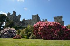 Penrhyn slott fotografering för bildbyråer