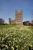 Penryhn Castle Stock Images