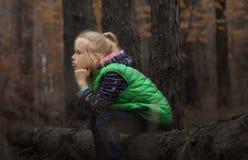 Pensa nella foresta Fotografia Stock Libera da Diritti