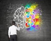 Pensamento criativo e analítico imagens de stock royalty free