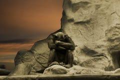 Pensamiento del chimpancé imagenes de archivo