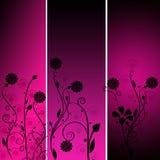 Pense a cor-de-rosa Fotografia de Stock