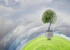 Pense o verde Imagem de Stock Royalty Free