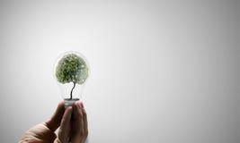 Pense o verde Foto de Stock