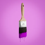 Penseel met purpere kleur wordt geladen die van het varkenshaar druipen dat stock afbeeldingen