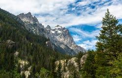 Penseelcanion Wyoming royalty-vrije stock fotografie