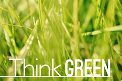 Pensez l'affiche de motivation verte de citation Images libres de droits
