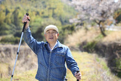 Pensionär övning som går Royaltyfri Foto