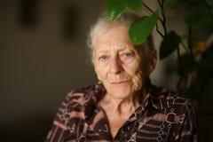 pensionär Royaltyfria Bilder